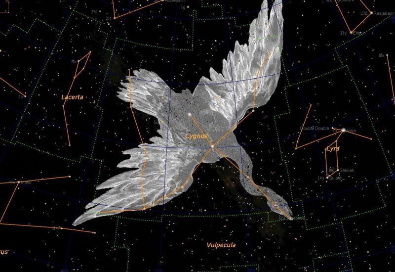 Астрономоя сузор я